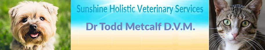 Sedona Holistic Veterinarian and Veterinary Services Acupuncture, Chiropractic, Herbs